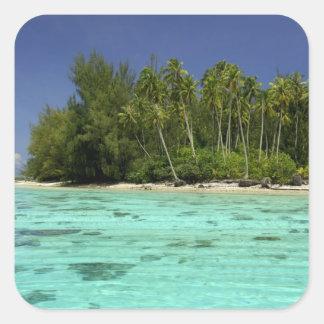 South Pacific, French Polynesia, Moorea 2 Square Sticker