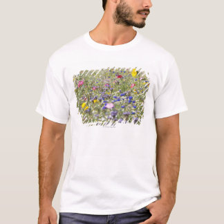 South Petherton, Somerset, UK T-Shirt