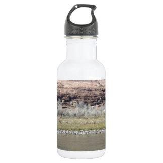 South Rim Grand Canyon 532 Ml Water Bottle