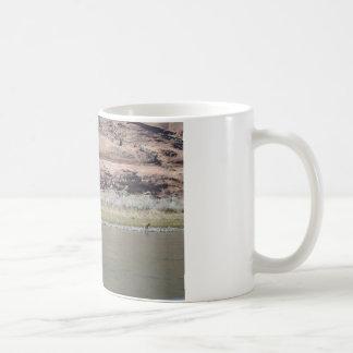 South Rim Grand Canyon Coffee Mugs