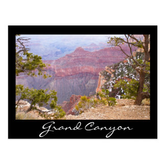 South Rim Grand canyon Postcard
