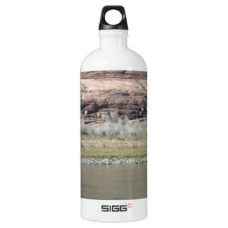 South Rim Grand Canyon SIGG Traveller 1.0L Water Bottle