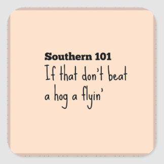 southern101-3 square sticker