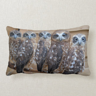 Southern Boobook Cross Eyed Owls Lumbar Cushion