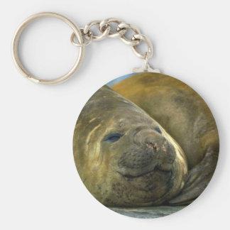 Southern Elephant Seals Keychain