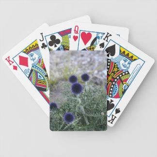 Southern globe thistle (Cardo pallotta) Poker Deck