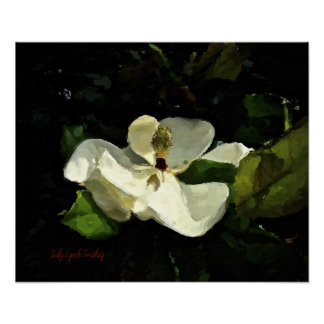 Southern Magnolia Art Poster