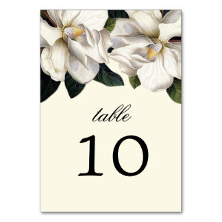 Southern Magnolia Botanical Wedding Table Cards