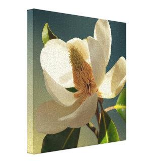 Southern Magnolia flower, romantic Canvas Print