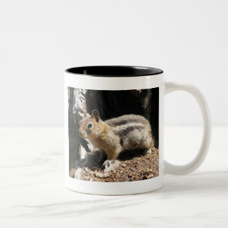 Southern Oregon Chipmunk Two-Tone Coffee Mug