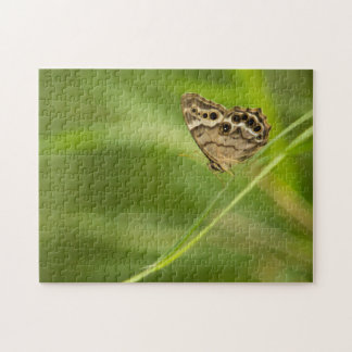 Southern Pearly Eye on a Palm Frond Jigsaw Puzzle