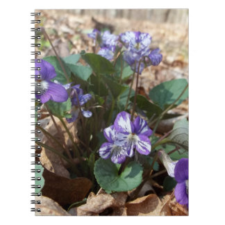 Southern Wood Violet Spiral Note Book