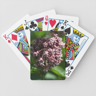 Southern Wormwood (Artemisia abrotanum) Bicycle Playing Cards