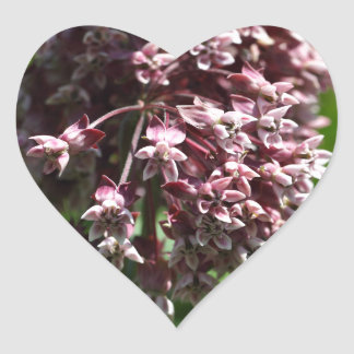 Southern Wormwood (Artemisia abrotanum) Heart Sticker
