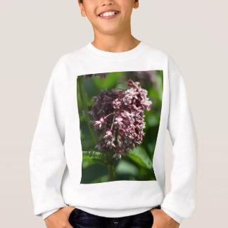 Southern Wormwood (Artemisia abrotanum) Sweatshirt