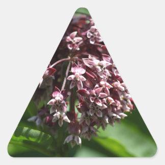 Southern Wormwood (Artemisia abrotanum) Triangle Sticker