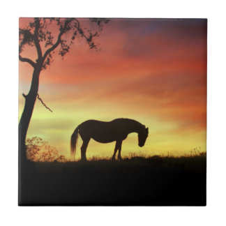 Southwestern Colour Horse in Sunrise Small Square Tile