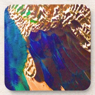 Southwestern Feathers Coasters
