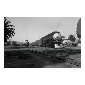 SP4415 Black and White Photo Poster