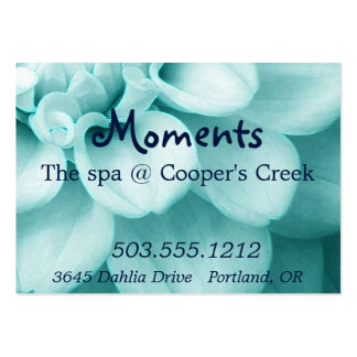 Spa Sample Pack Of Chubby Business Cards