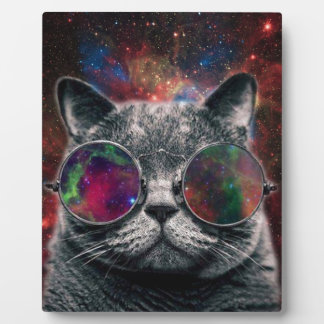 Space Cat Wearing Goggles in Front of the Galaxy Plaque