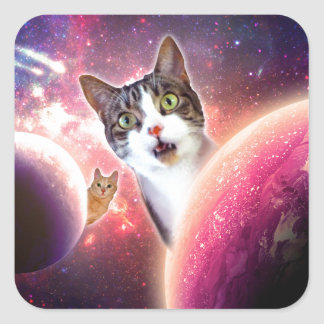 Space Cats LOL Funny Square Sticker