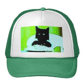 spaghetti cat hat