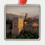 Spain, Granada, Andalucia The Alhambra, Silver-Colored Square Decoration