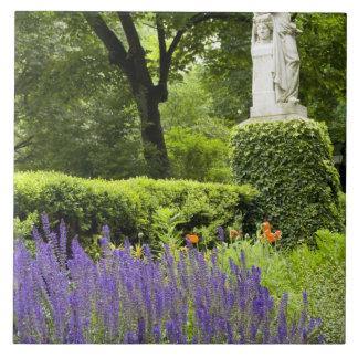 Spain, Madrid. Royal Botanic Garden aka Real Large Square Tile
