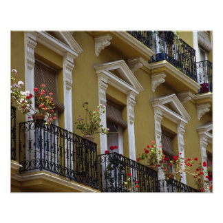 Spain, Sevilla, Andalucia Geraniums hang over Poster