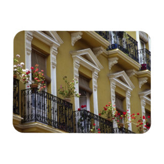 Spain, Sevilla, Andalucia Geraniums hang over Rectangular Photo Magnet