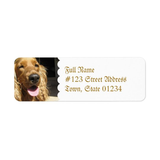 Spaniel Dog Mailing Label
