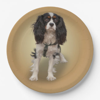SPANIEL PAPER PLATE