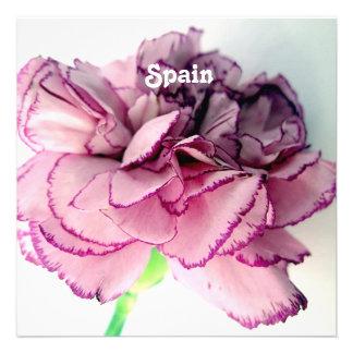 Spanish Carnations Custom Announcement