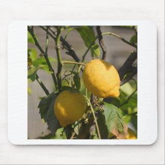 Spanish Lemon Graphics Mouse Pad