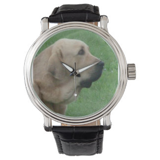 spanish ma.png watch