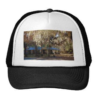 Spanish Moss, Micanopy, Florida Cap