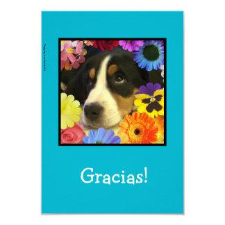 Spanish: Thank you card / Gracias! 9 Cm X 13 Cm Invitation Card