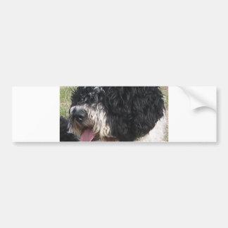 Spanish Water Dog b/w.png Bumper Sticker