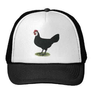 Spanish:  White-faced Hen Cap
