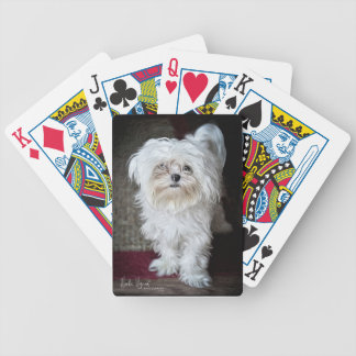 Spanky the Maltese Bicycle Playing Cards