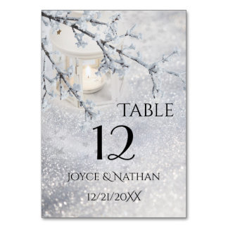 Sparkling Snow Winter Wedding Table Number Card