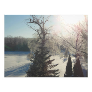 Sparkling Sunrise Trees Snow Covered Lake Photo