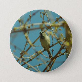 Sparrow and Forsythia Badge