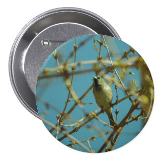 Sparrow and Forsythia Badge