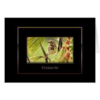 Sparrow-  Bird Collection - Black/Gold Card