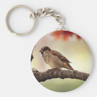 Sparrow Bird in Tree Key Ring