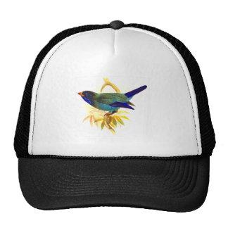 Sparrow Cap