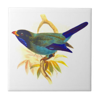 Sparrow Ceramic Tile
