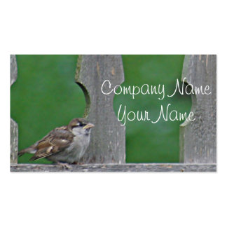 Sparrow fledgling pack of standard business cards
